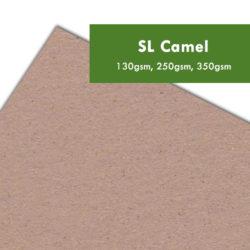papier recyklingowy SL Camel drukarnia