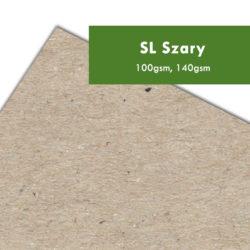 papier recyklingowy SL Szary drukarnia